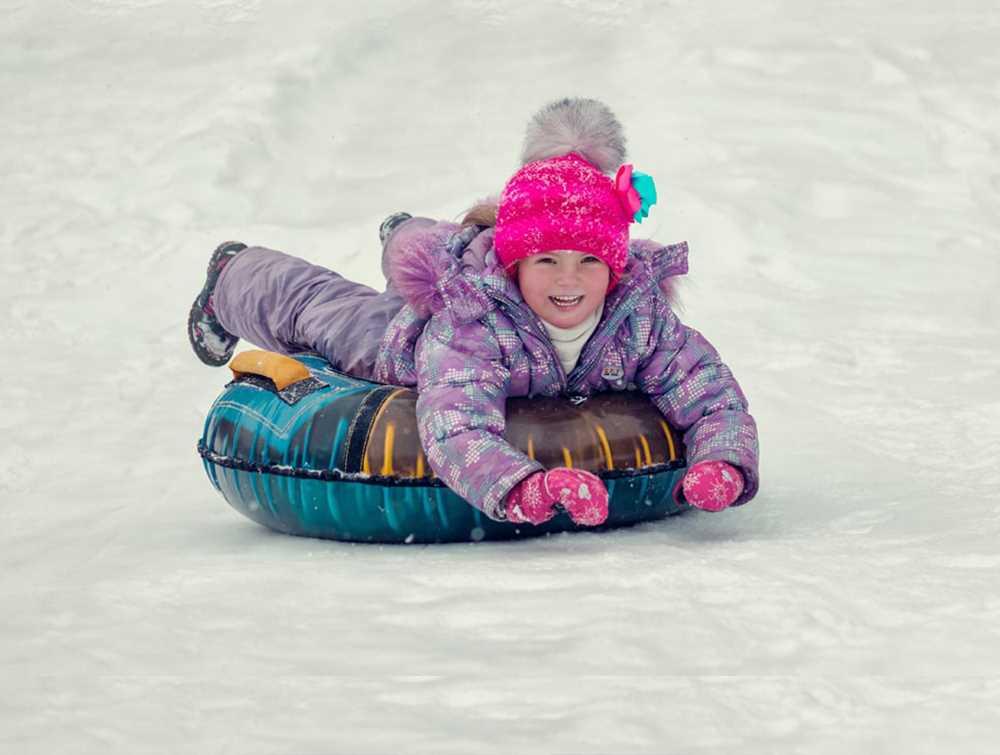 Double Snow Slide