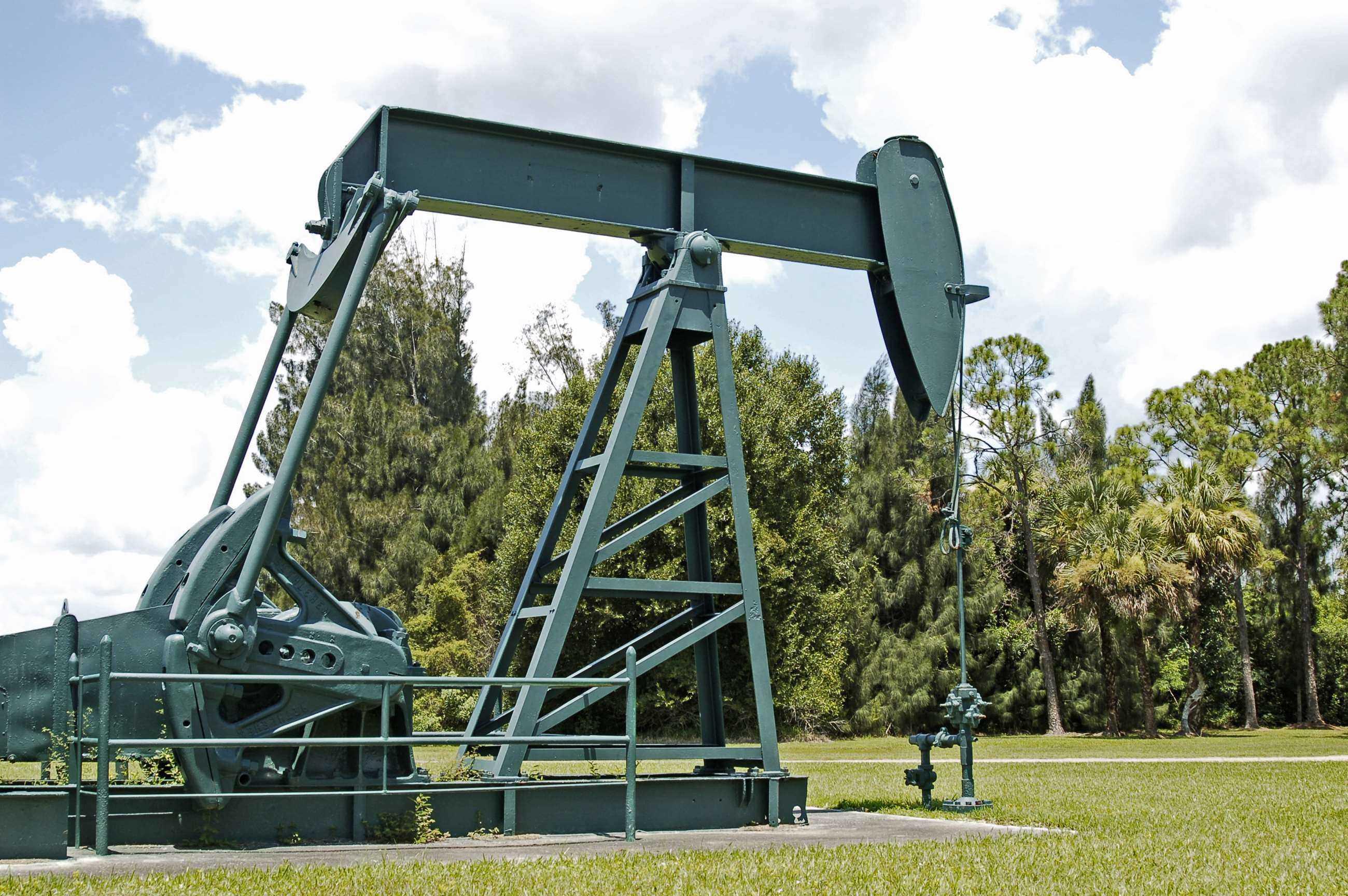 OilWellPk1 2010 1