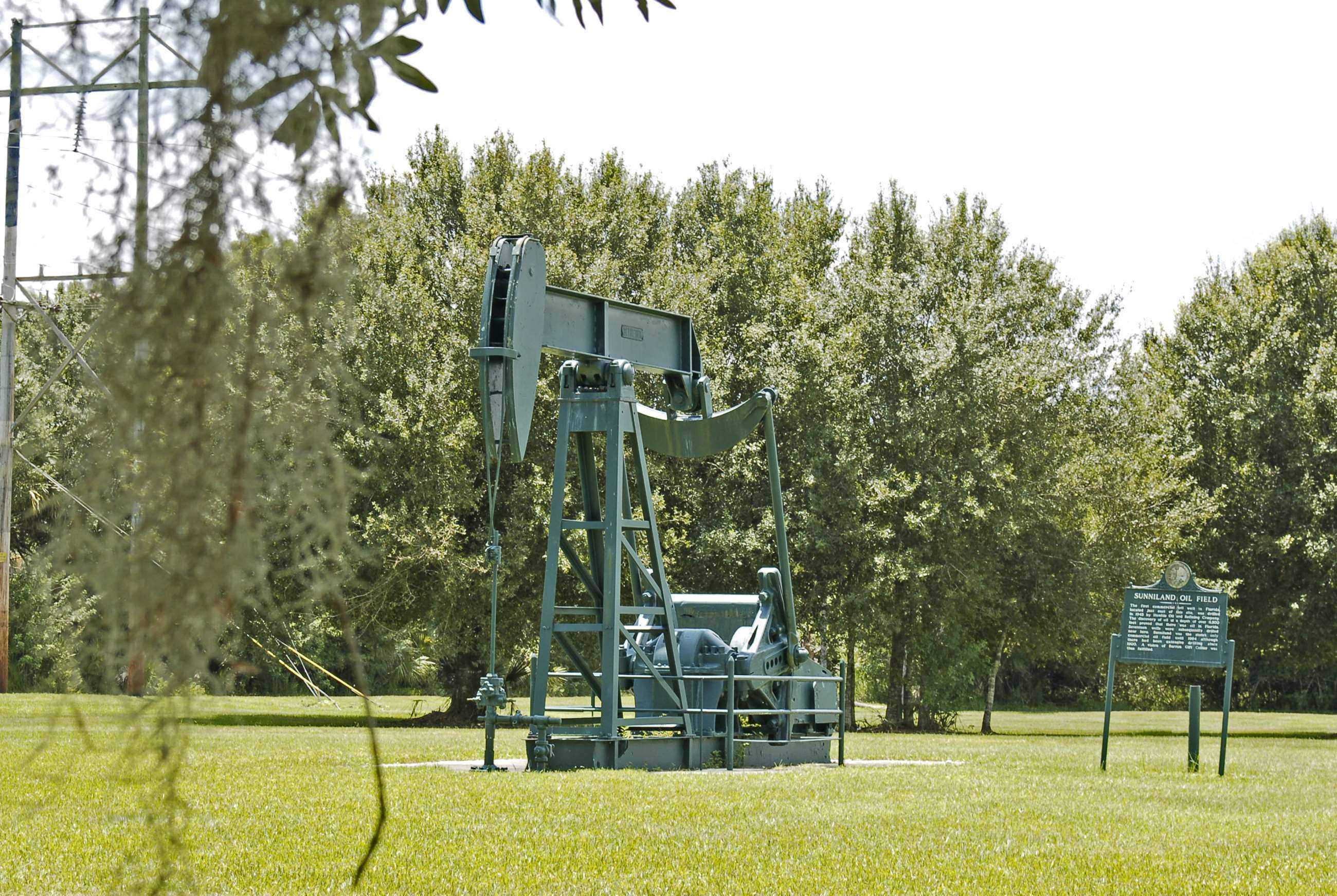 OilWellPk5 2010 1