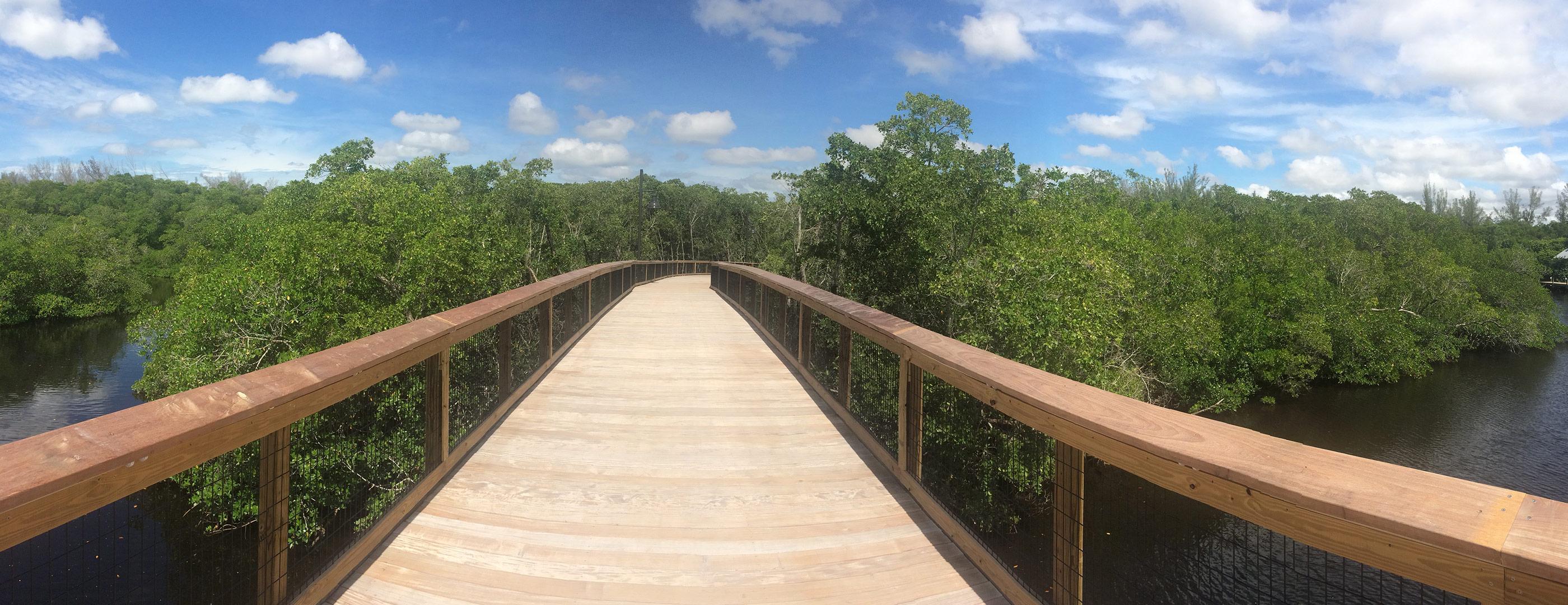 Board walk through preserve